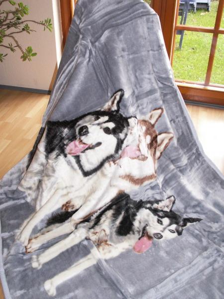 tagesdecke kuscheldecke decke mit motiv 3 husky blau ebay. Black Bedroom Furniture Sets. Home Design Ideas