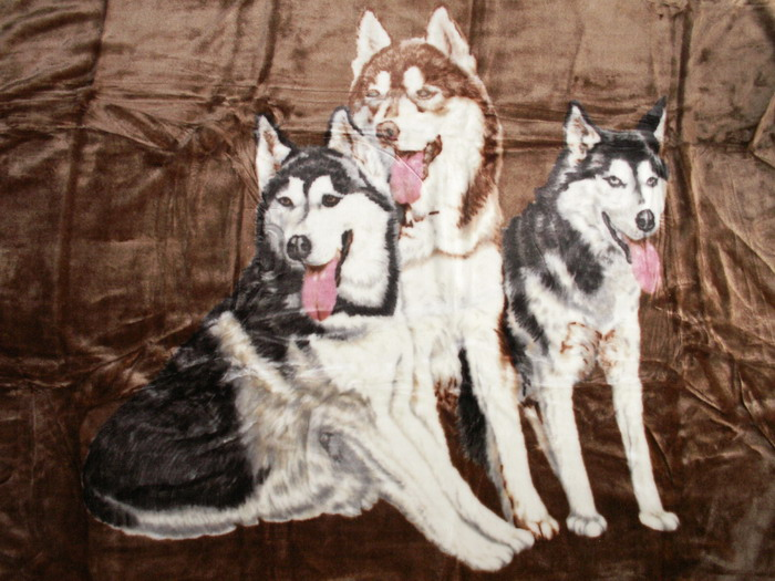 Kuscheldecke Tagesdecke Wohndecke Decke Plaid Motiv 3 Husky braun 160x200cm